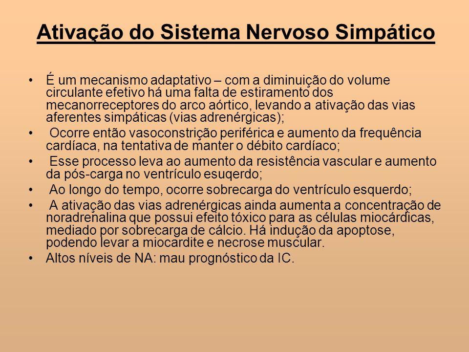 Ativação do Sistema Nervoso Simpático