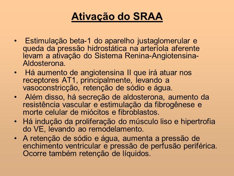 Ativação do SRAA