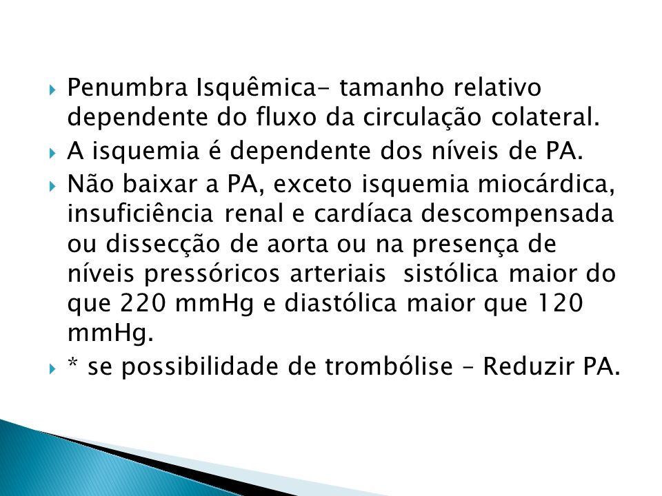 Penumbra Isquêmica- tamanho relativo dependente do fluxo da circulação colateral.