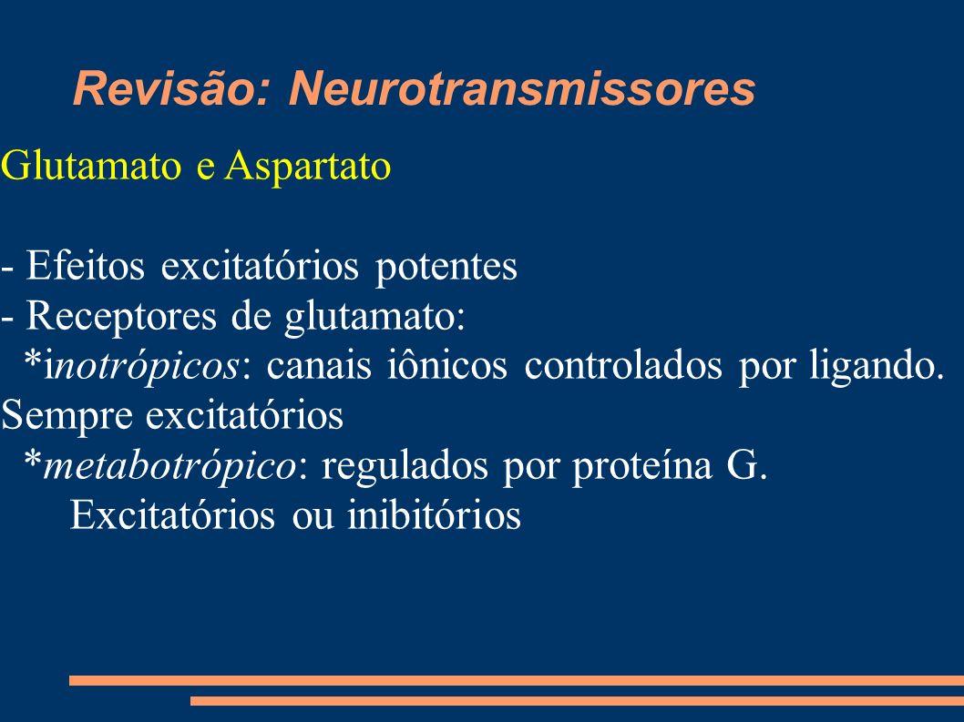 Revisão: Neurotransmissores