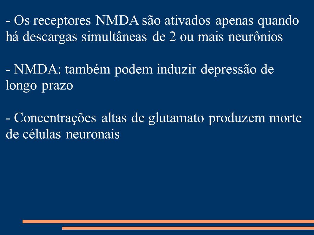 - Os receptores NMDA são ativados apenas quando há descargas simultâneas de 2 ou mais neurônios