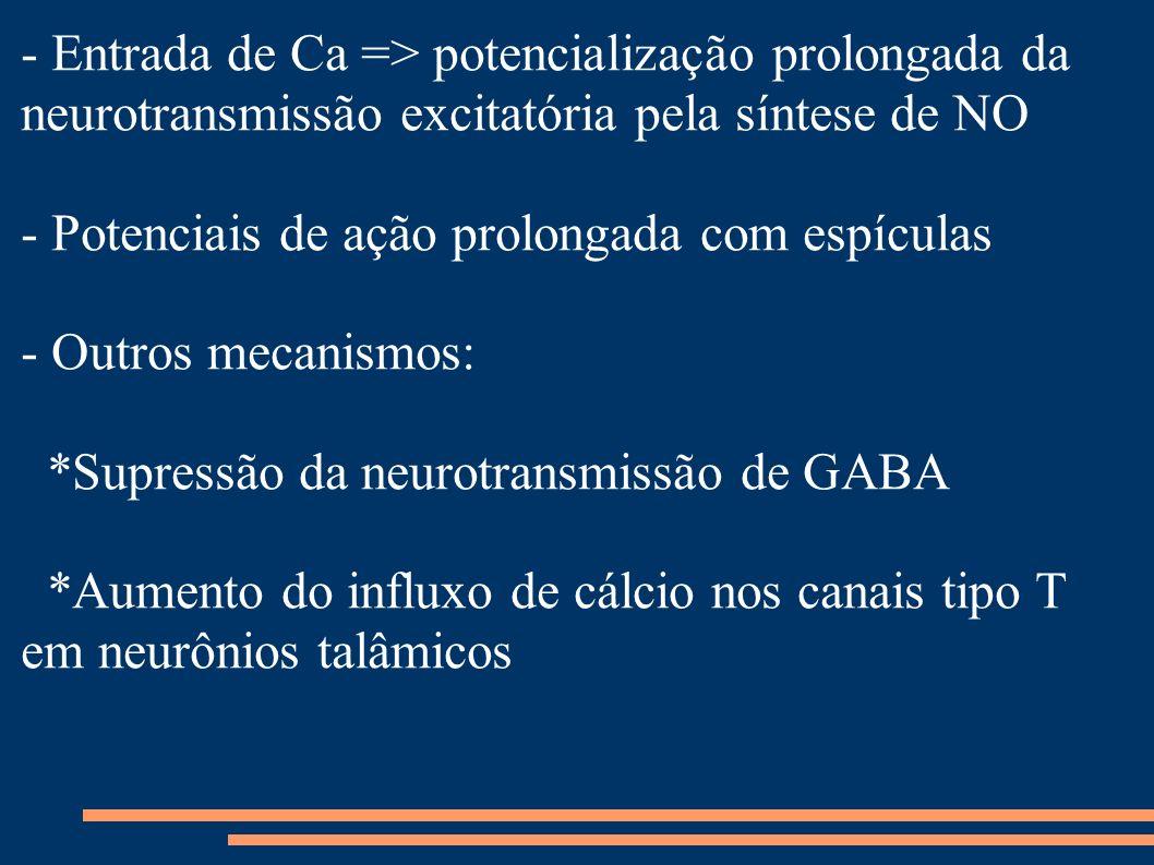 - Entrada de Ca => potencialização prolongada da neurotransmissão excitatória pela síntese de NO