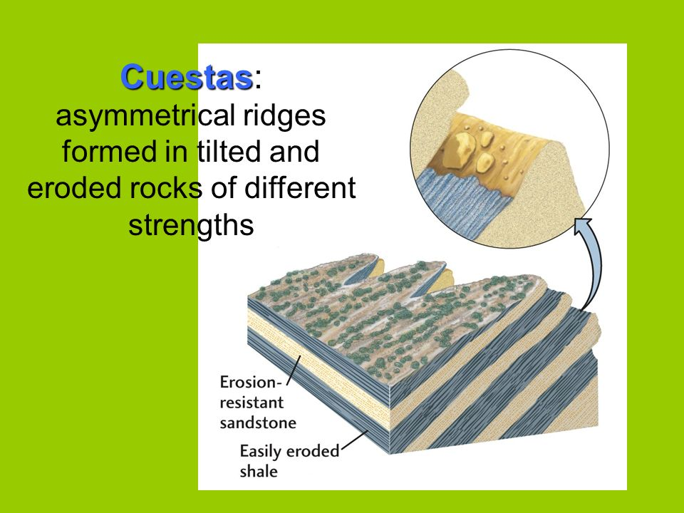 Cuestas: asymmetrical ridges formed in tilted and eroded rocks of different strengths