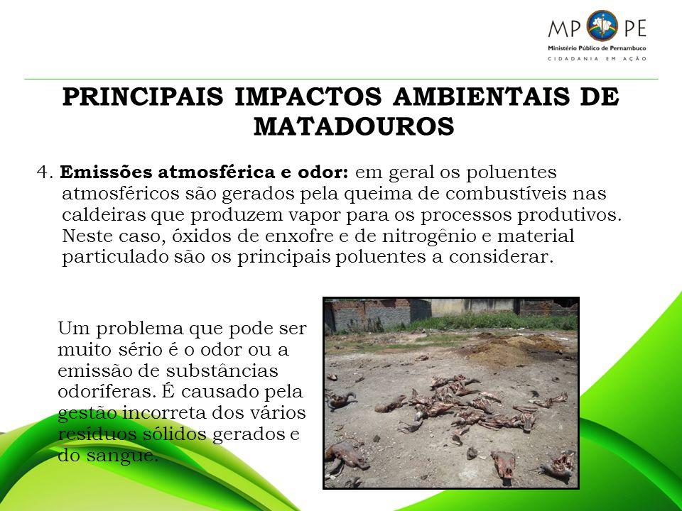PRINCIPAIS IMPACTOS AMBIENTAIS DE MATADOUROS