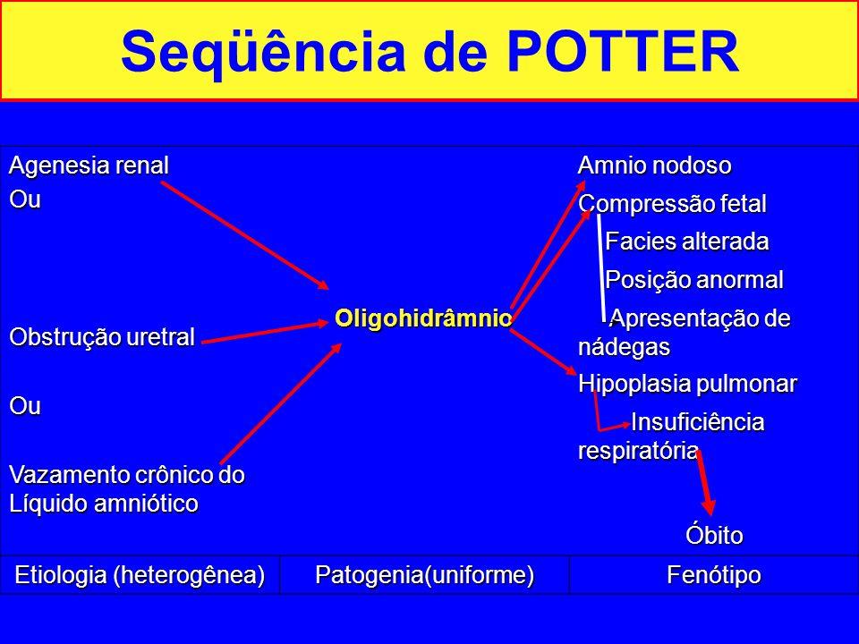 Etiologia (heterogênea)