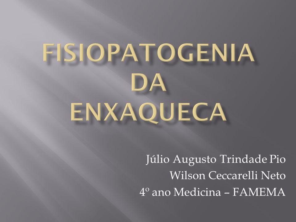 Fisiopatogenia da Enxaqueca