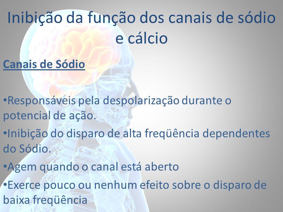 Inibição da função dos canais de sódio e cálcio