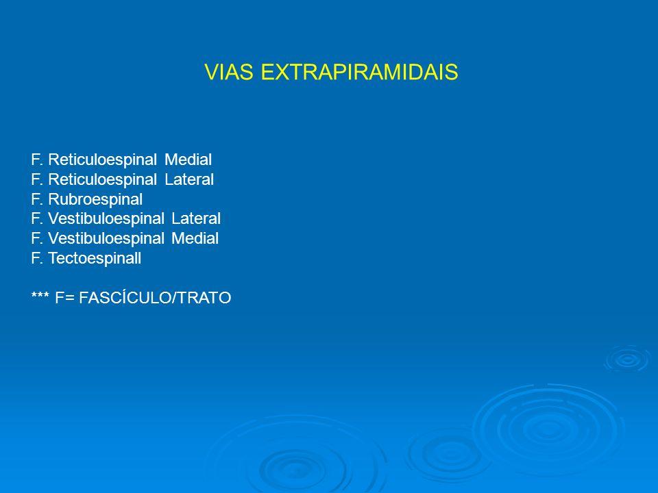 VIAS EXTRAPIRAMIDAIS F. Reticuloespinal Medial