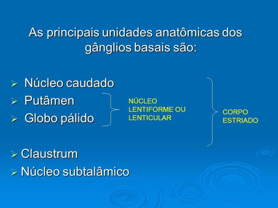 As principais unidades anatômicas dos gânglios basais são: