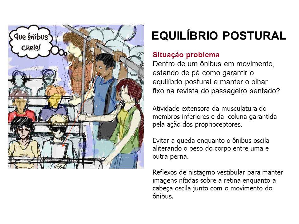 EQUILÍBRIO POSTURAL Situação problema