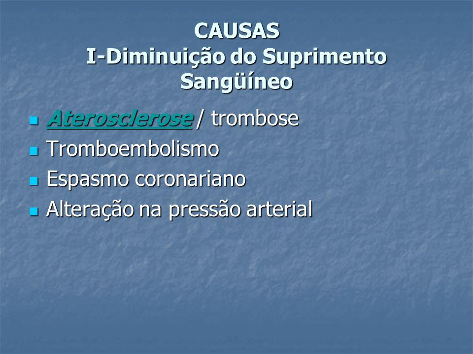 CAUSAS I-Diminuição do Suprimento Sangüíneo