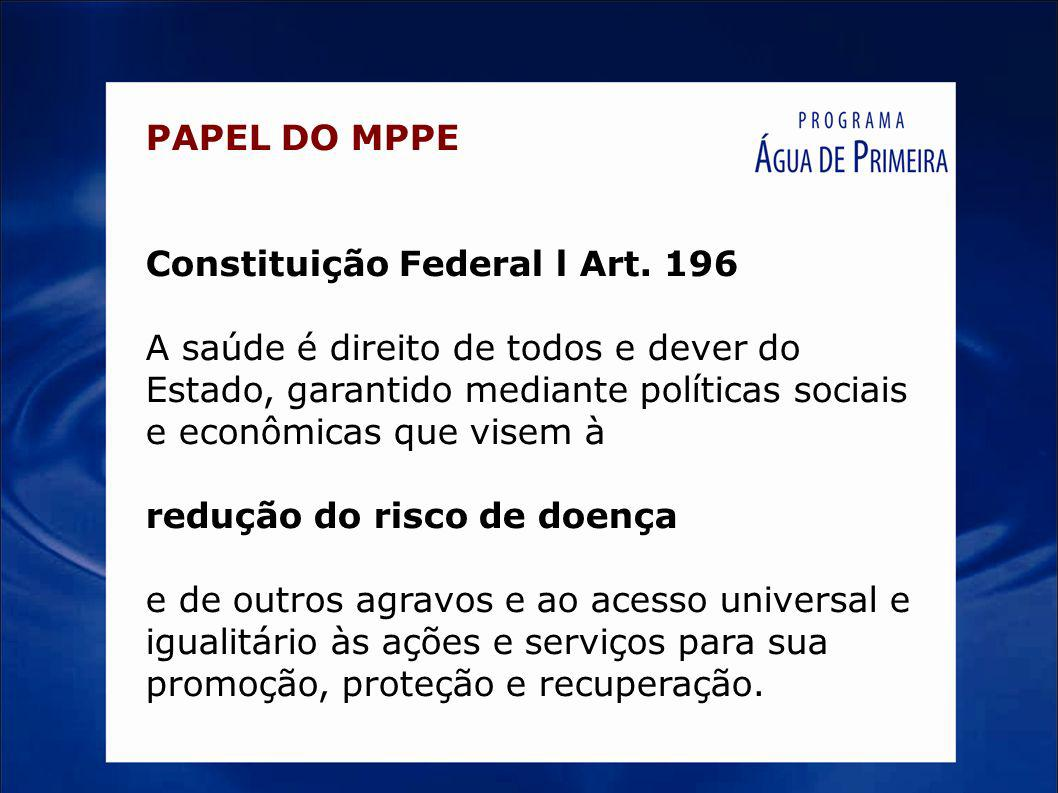 PAPEL DO MPPE