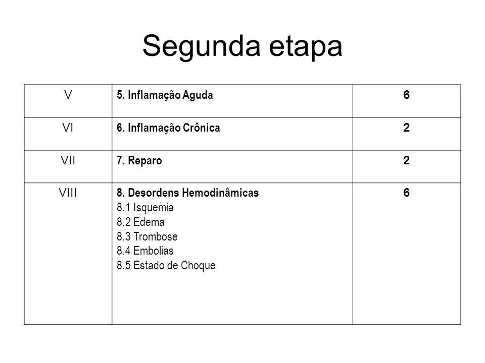 Segunda etapa V 5. Inflamação Aguda 6 VI 6. Inflamação Crônica 2 VII