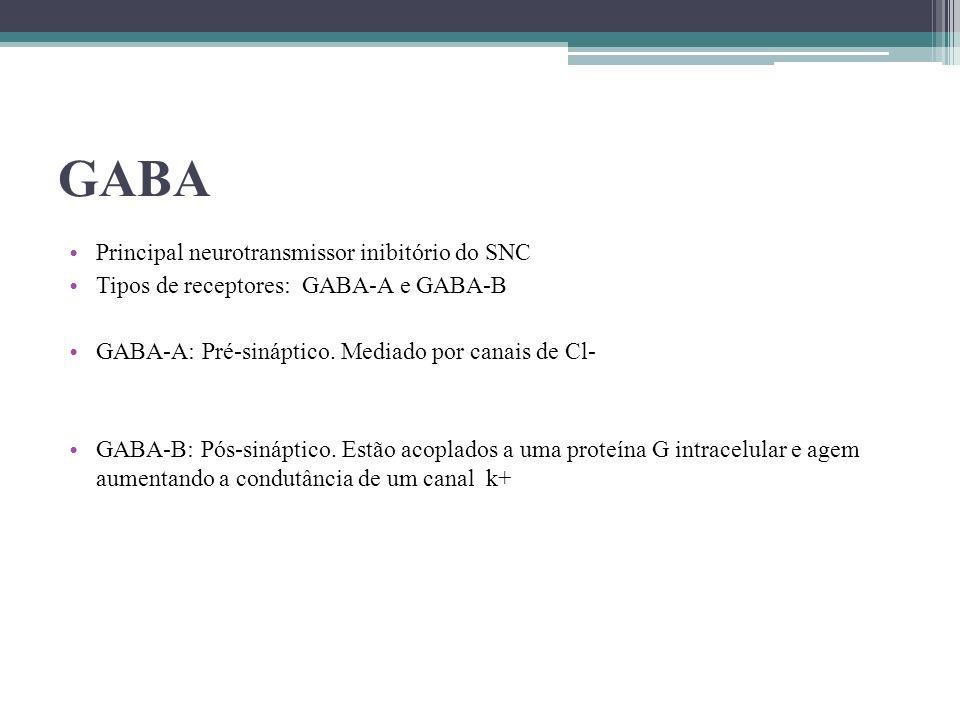 GABA Principal neurotransmissor inibitório do SNC