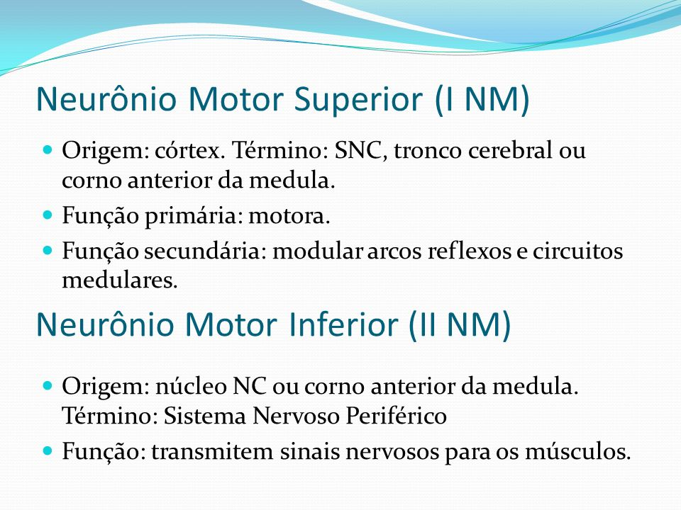 Neurônio Motor Superior (I NM)