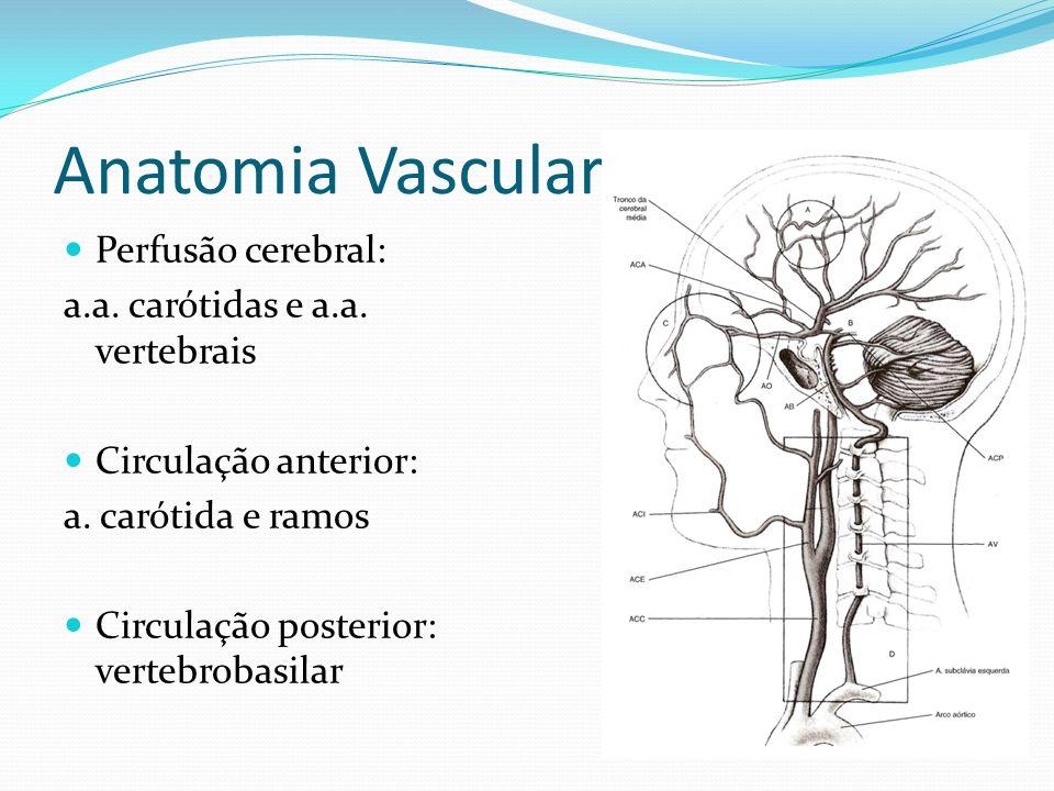 Anatomia Vascular Perfusão cerebral: a.a. carótidas e a.a. vertebrais