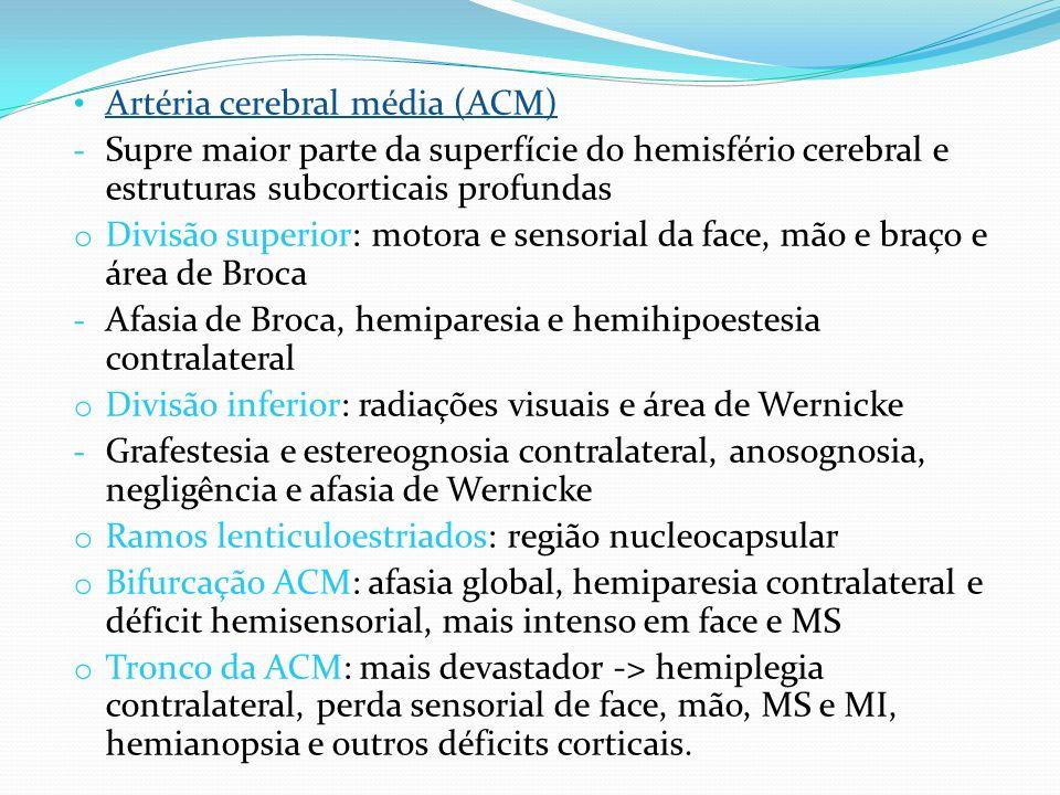 Artéria cerebral média (ACM)