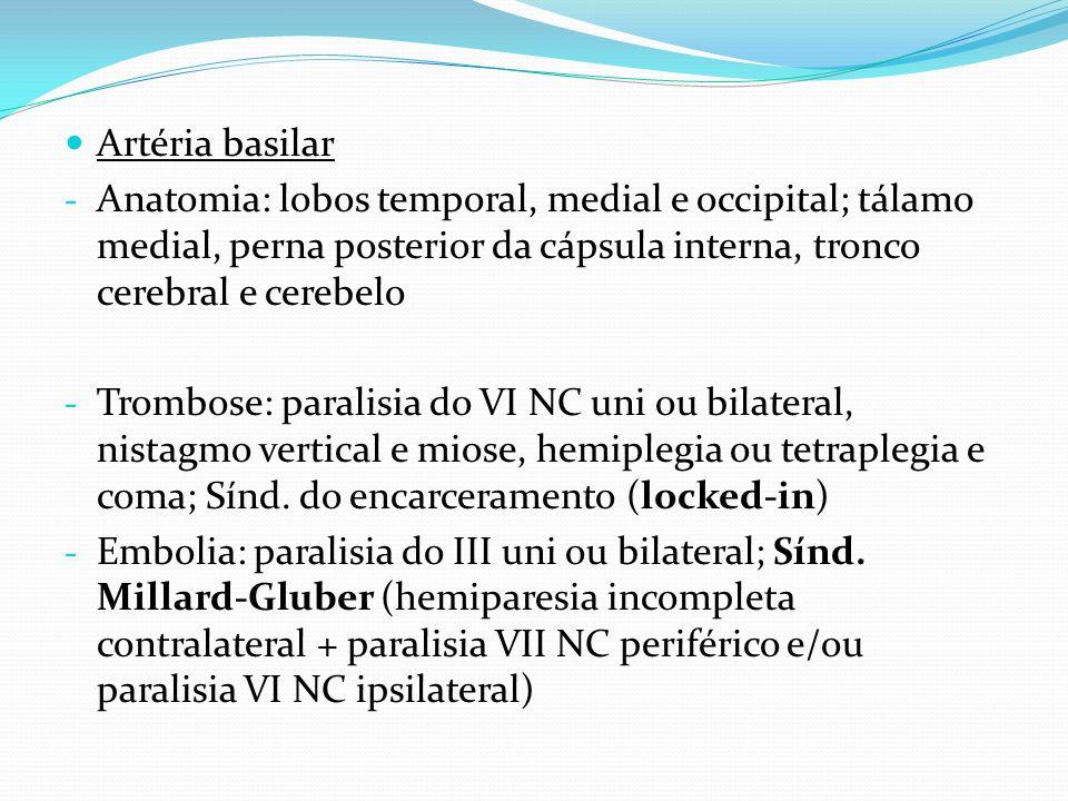 Artéria basilar Anatomia: lobos temporal, medial e occipital; tálamo medial, perna posterior da cápsula interna, tronco cerebral e cerebelo.