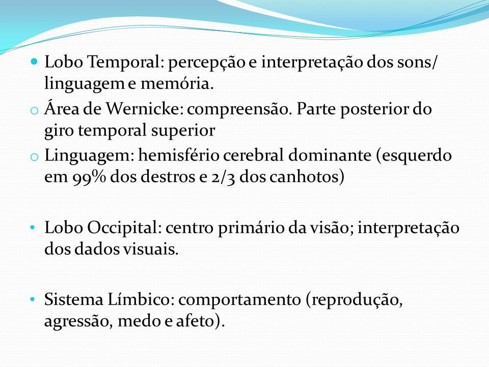Lobo Temporal: percepção e interpretação dos sons/ linguagem e memória.