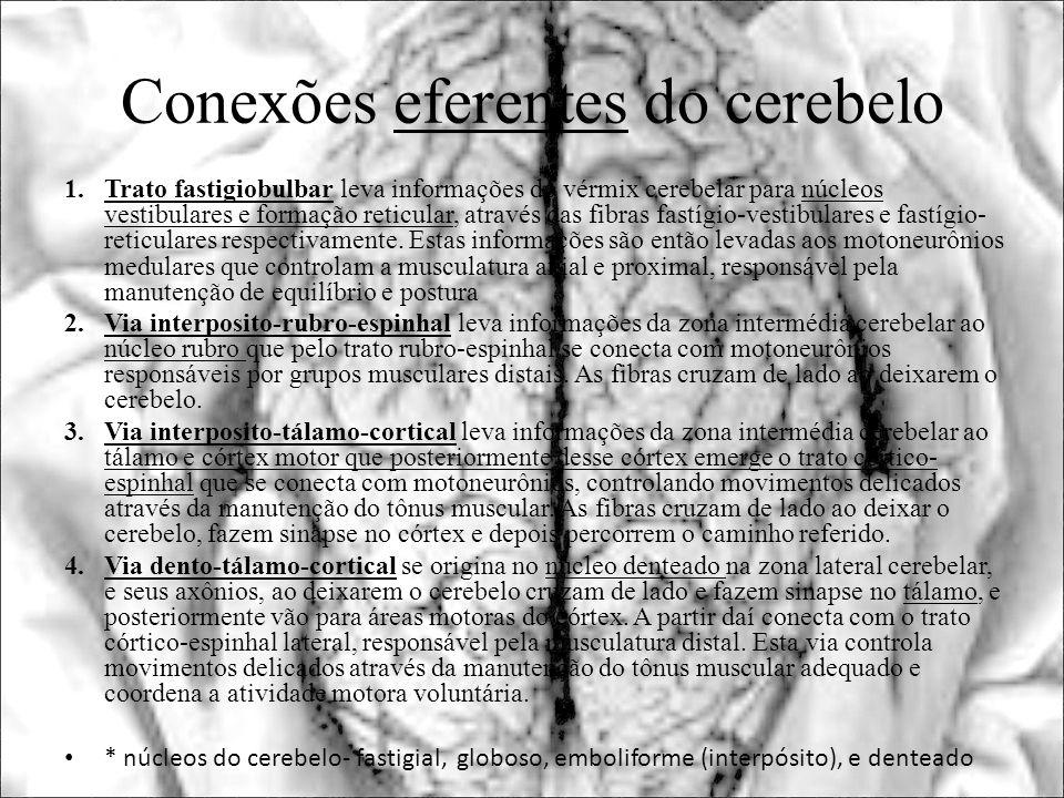Conexões eferentes do cerebelo