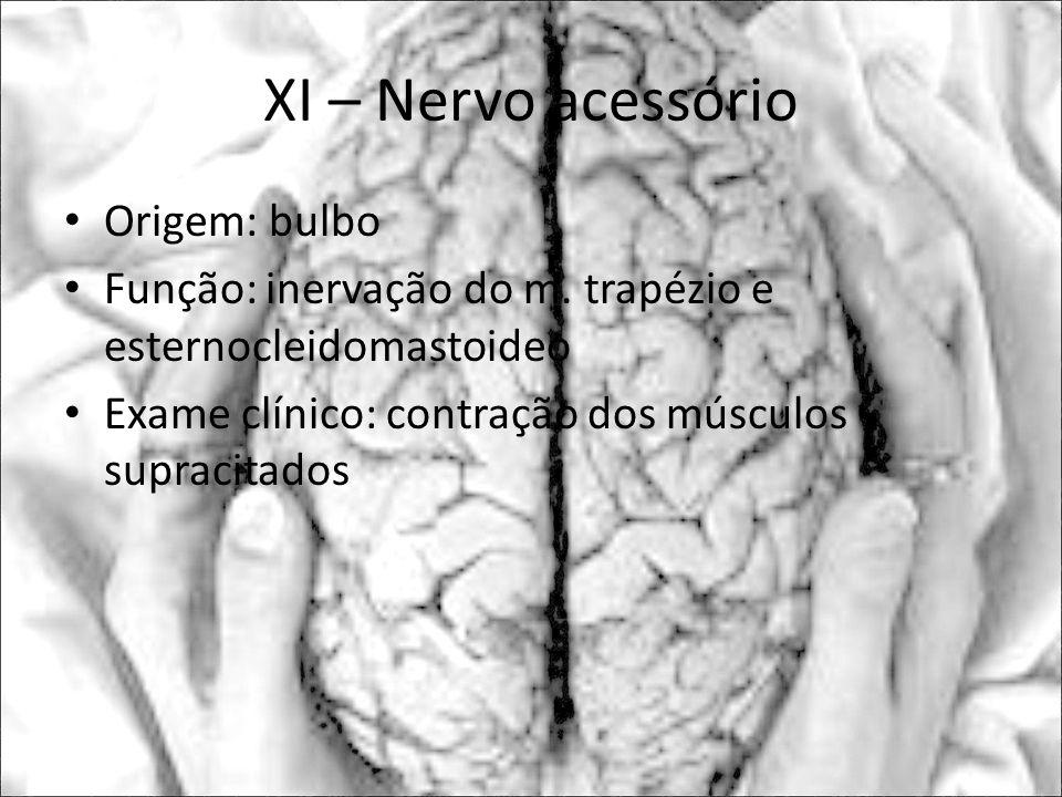 XI – Nervo acessório Origem: bulbo