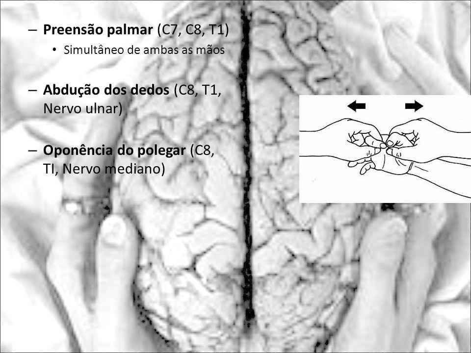 Abdução dos dedos (C8, T1, Nervo ulnar)