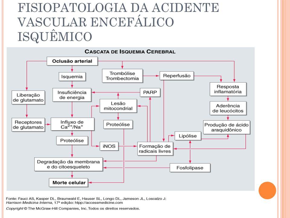 FISIOPATOLOGIA DA ACIDENTE VASCULAR ENCEFÁLICO ISQUÊMICO