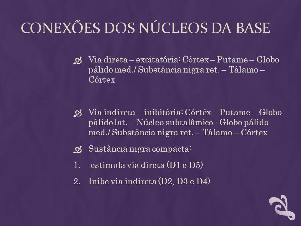 CONEXÕES DOS NÚCLEOS DA BASE