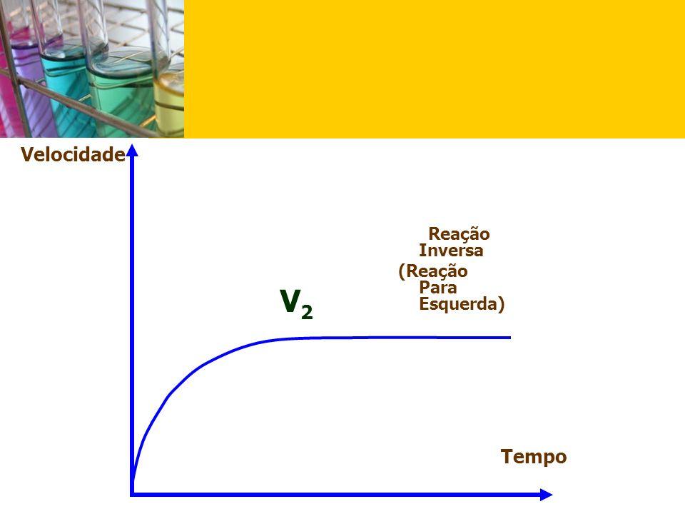 Velocidade Reação Inversa (Reação Para Esquerda) V2 Tempo