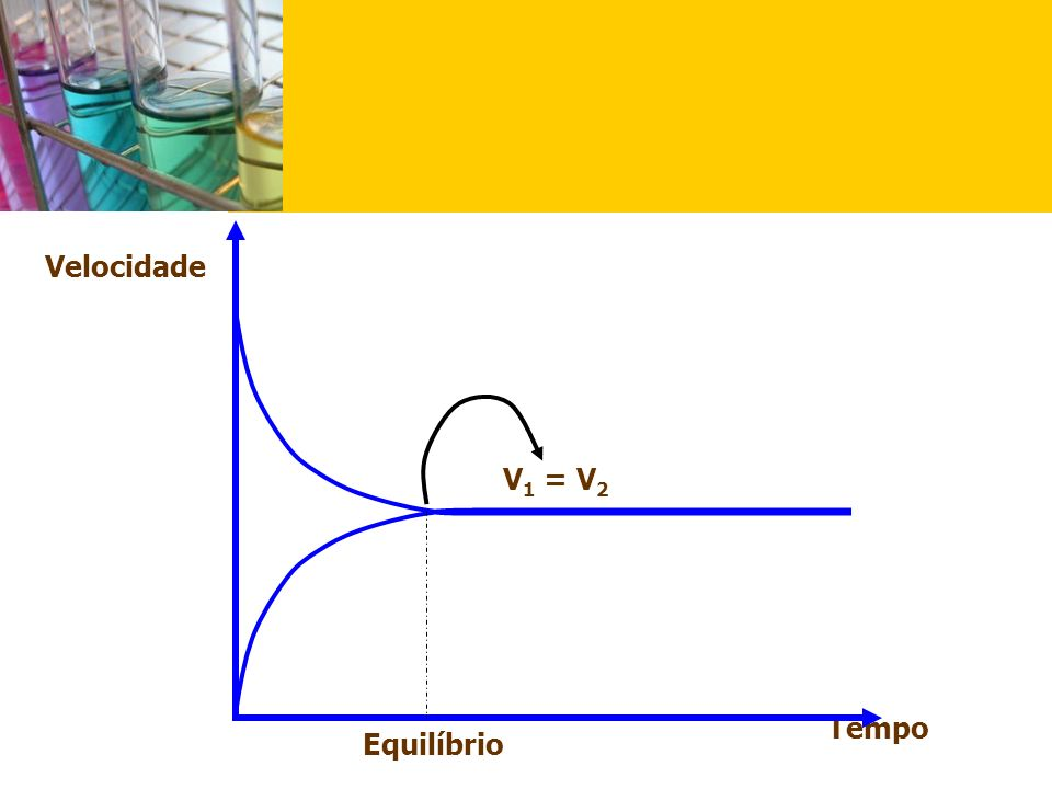 Velocidade V1 = V2 Tempo Equilíbrio