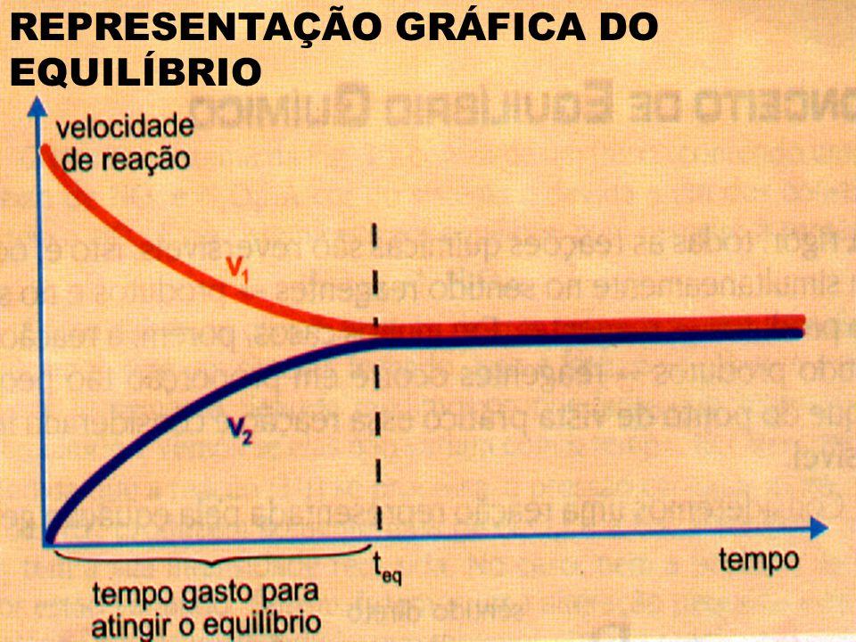 REPRESENTAÇÃO GRÁFICA DO EQUILÍBRIO
