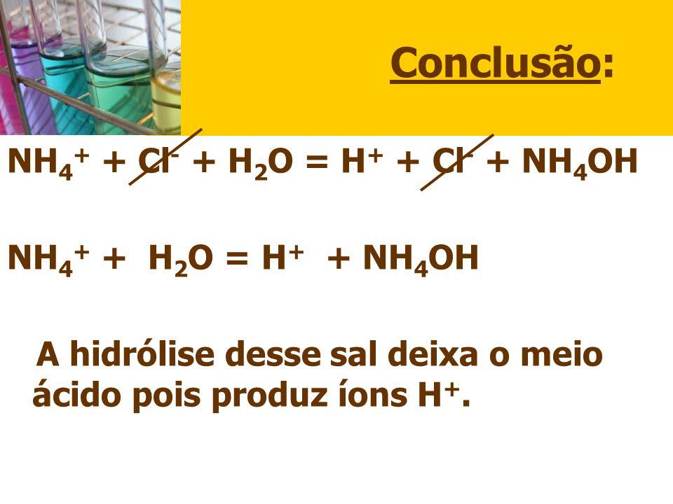 Conclusão: NH4+ + Cl- + H2O = H+ + Cl- + NH4OH NH4+ + H2O = H+ + NH4OH