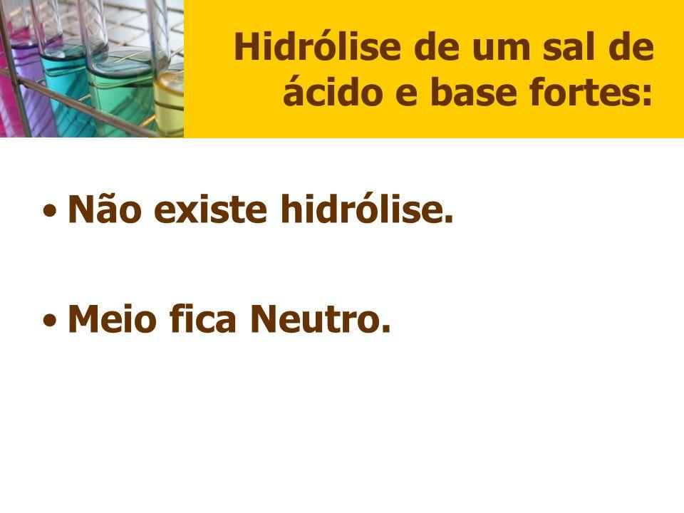 Hidrólise de um sal de ácido e base fortes: