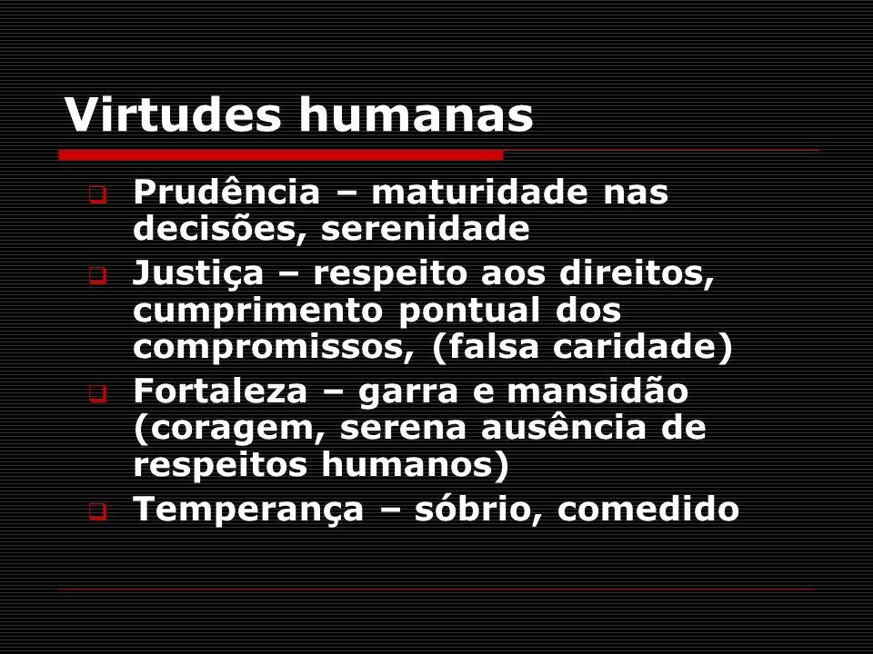 Virtudes humanas Prudência – maturidade nas decisões, serenidade