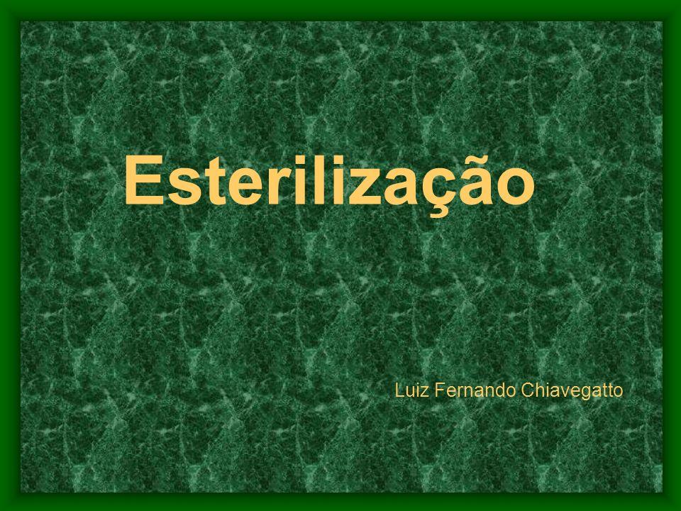 Esterilização Luiz Fernando Chiavegatto