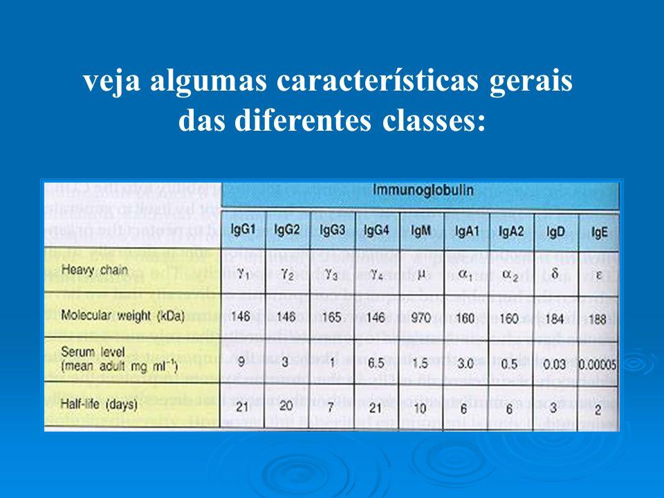 veja algumas características gerais das diferentes classes: