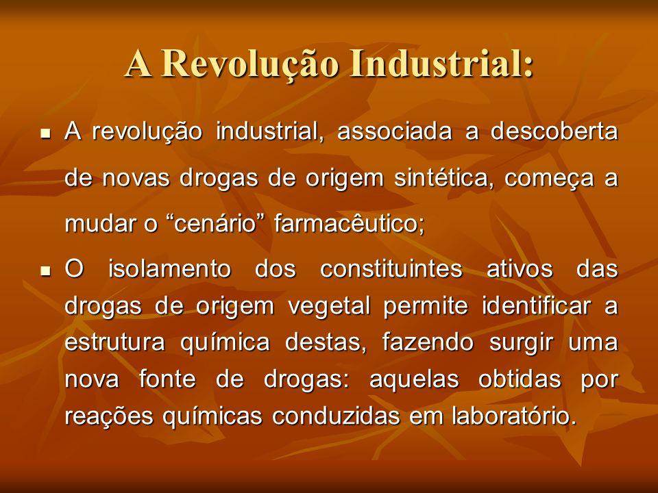 A Revolução Industrial:
