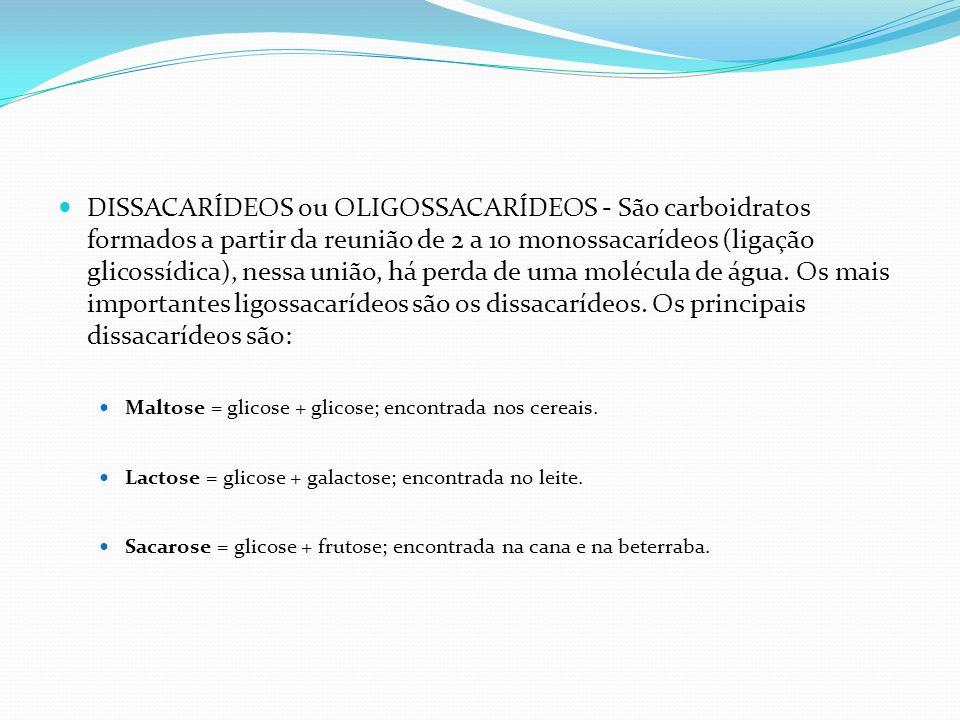 DISSACARÍDEOS ou OLIGOSSACARÍDEOS - São carboidratos formados a partir da reunião de 2 a 10 monossacarídeos (ligação glicossídica), nessa união, há perda de uma molécula de água. Os mais importantes ligossacarídeos são os dissacarídeos. Os principais dissacarídeos são: