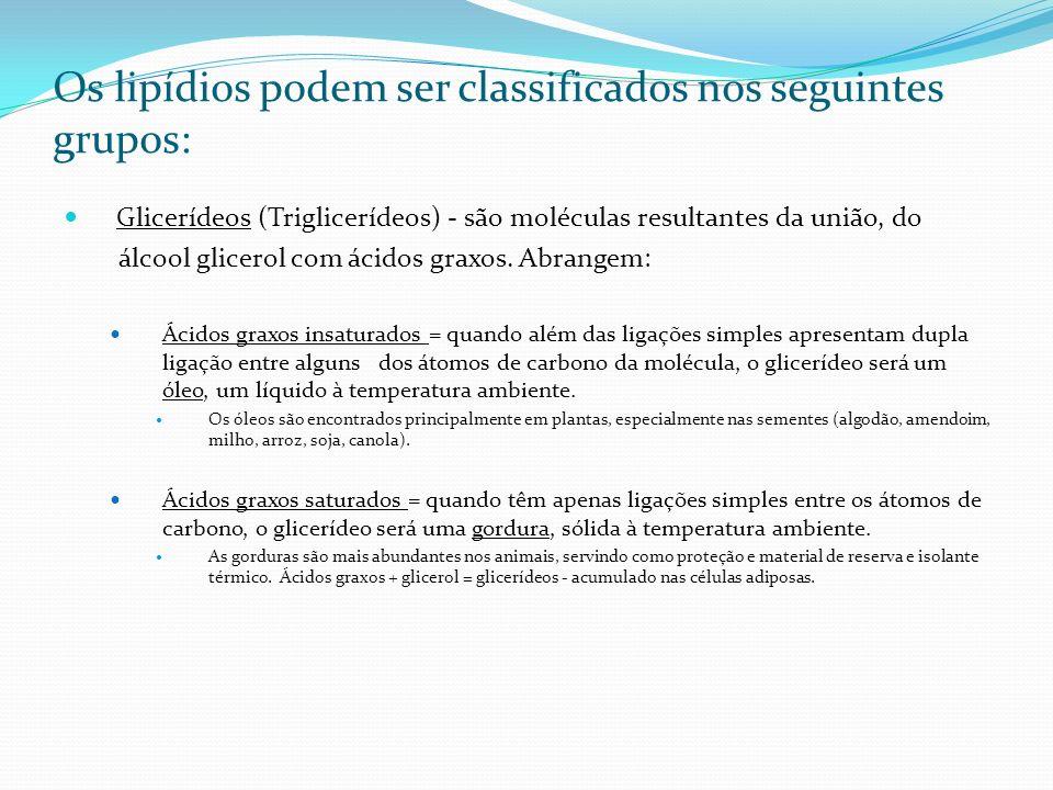 Os lipídios podem ser classificados nos seguintes grupos: