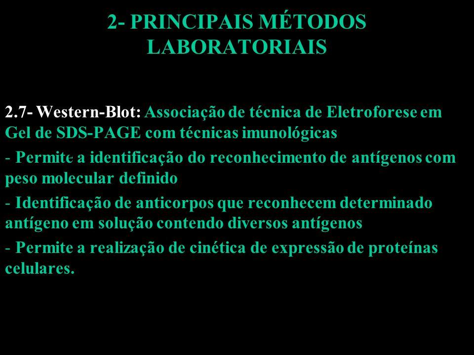 2- PRINCIPAIS MÉTODOS LABORATORIAIS