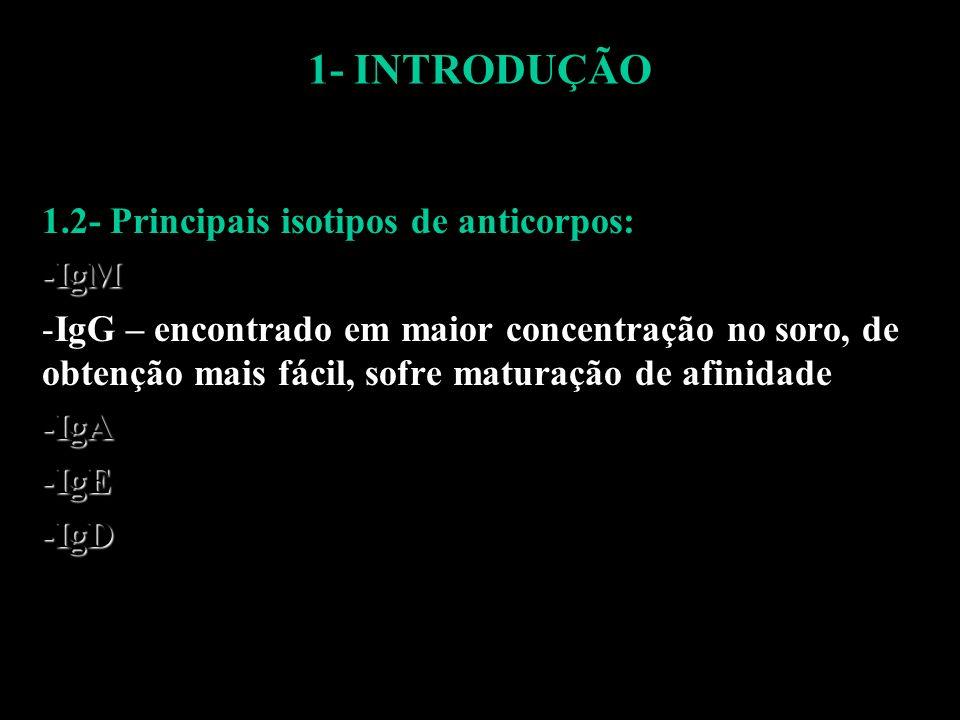 1- INTRODUÇÃO 1.2- Principais isotipos de anticorpos: IgM
