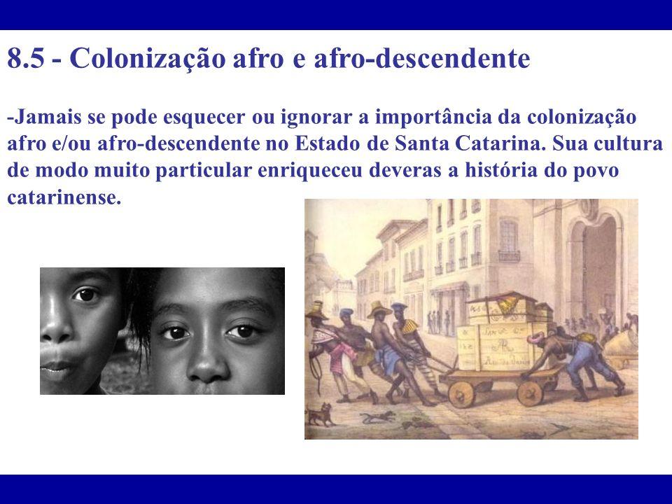 8.5 - Colonização afro e afro-descendente
