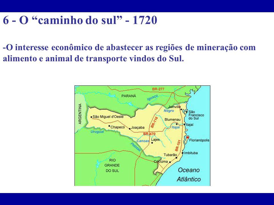 6 - O caminho do sul - 1720 -O interesse econômico de abastecer as regiões de mineração com alimento e animal de transporte vindos do Sul.