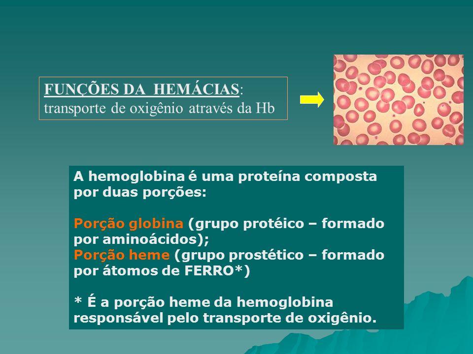 FUNÇÕES DA HEMÁCIAS: transporte de oxigênio através da Hb