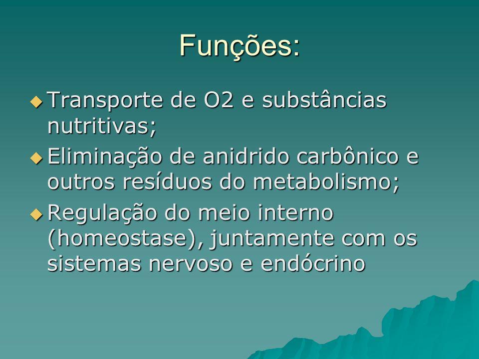 Funções: Transporte de O2 e substâncias nutritivas;