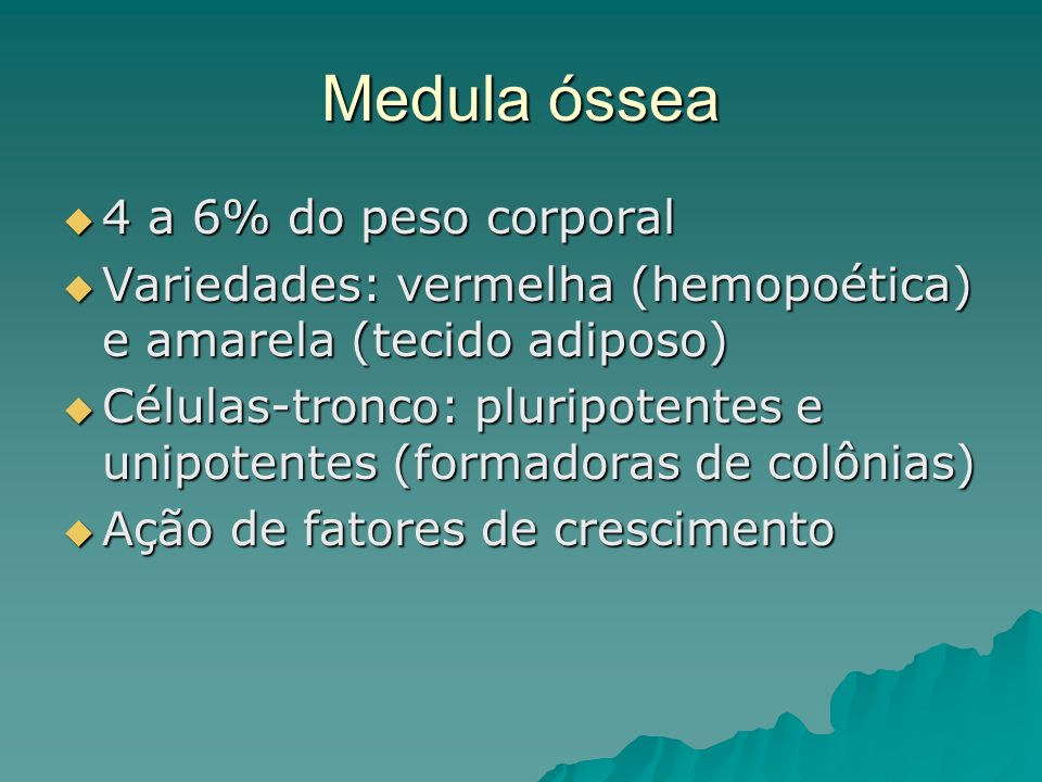 Medula óssea 4 a 6% do peso corporal