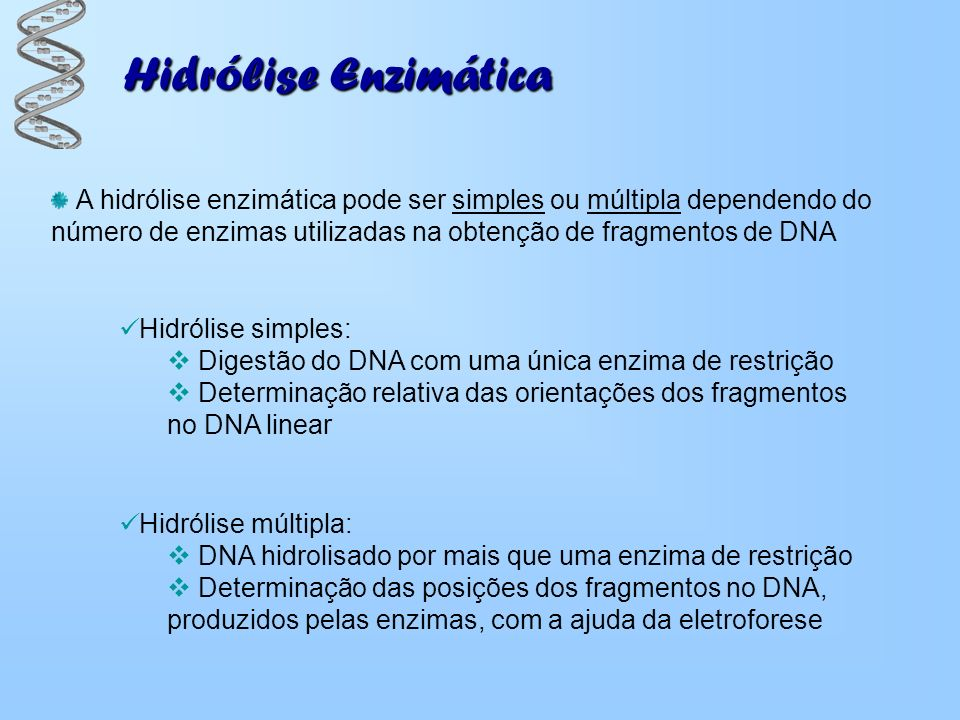 Hidrólise Enzimática Hidrólise simples: