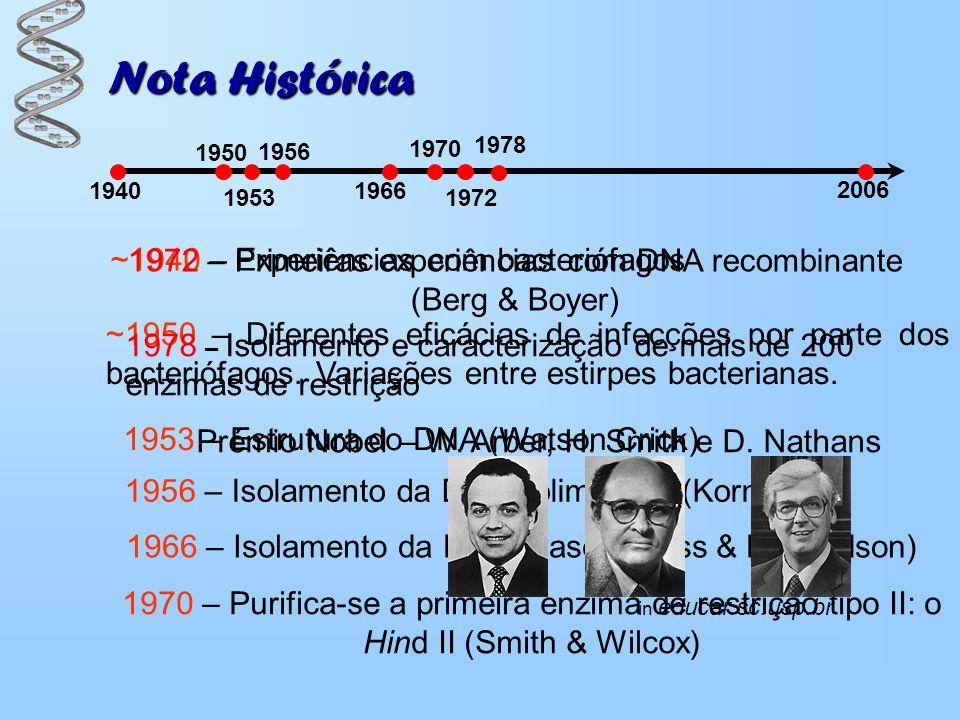 ~1940 – Experiências com bacteriófagos