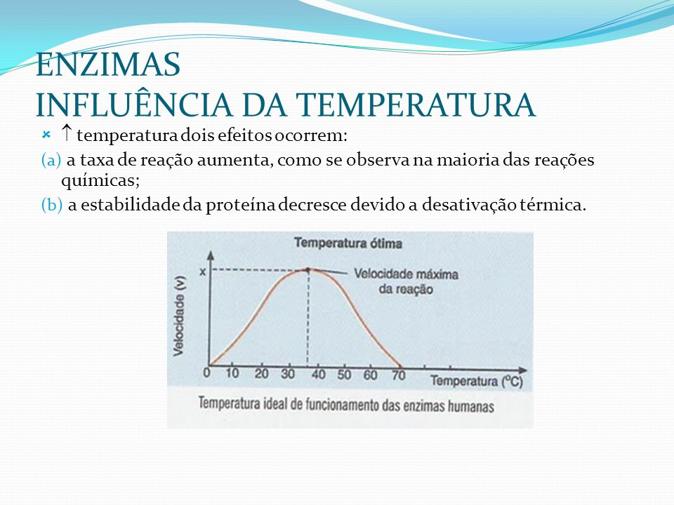 ENZIMAS INFLUÊNCIA DA TEMPERATURA