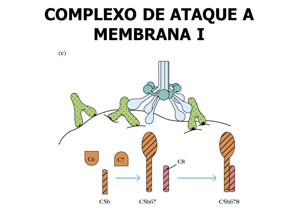 COMPLEXO DE ATAQUE A MEMBRANA I
